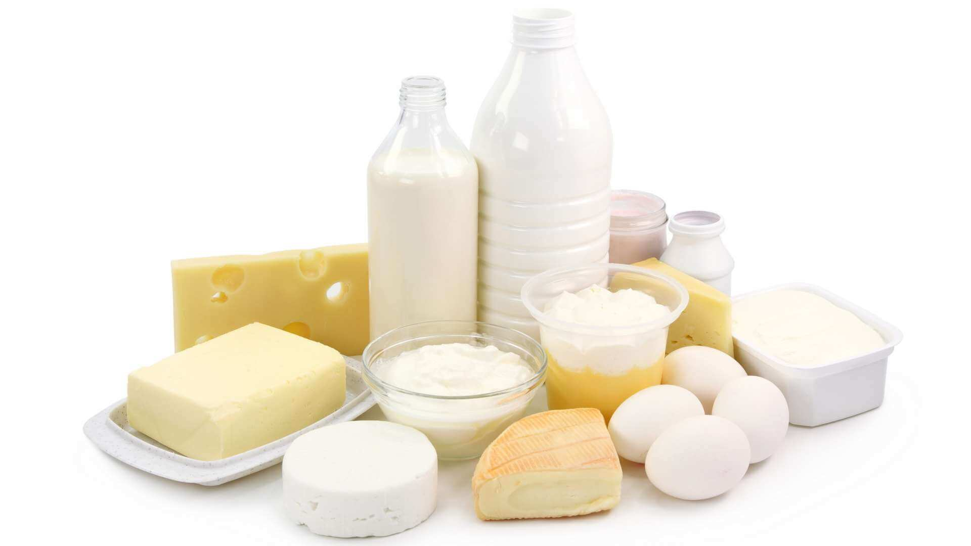 Dairy products, cheeses, eggs